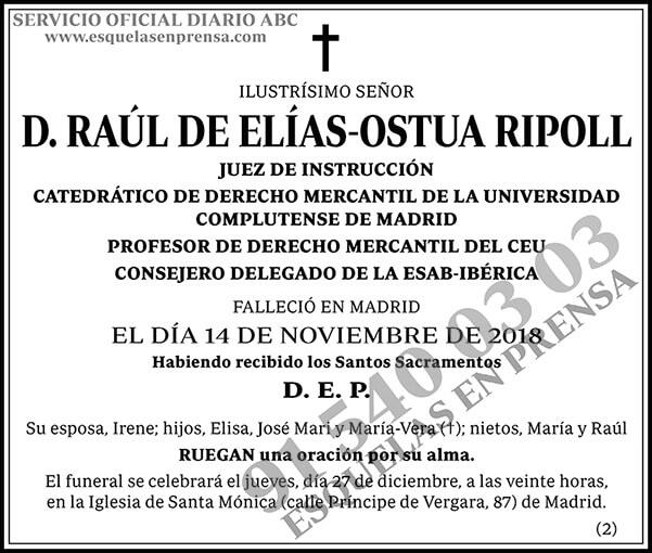 Raúl de Elías-Ostua Ripoll